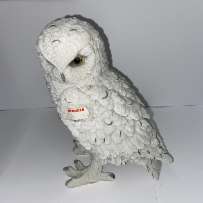 Snowy watch large owl